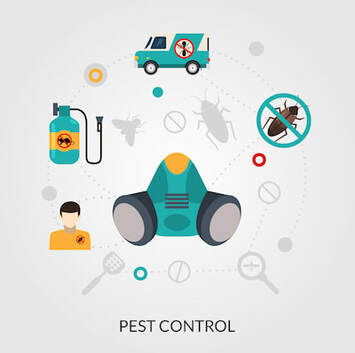 Is Quarterly Pest Control Necessary?