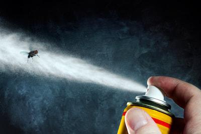 Does Fly Spray Expire?